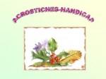 ACROSTICHE HANDICAP.jpg